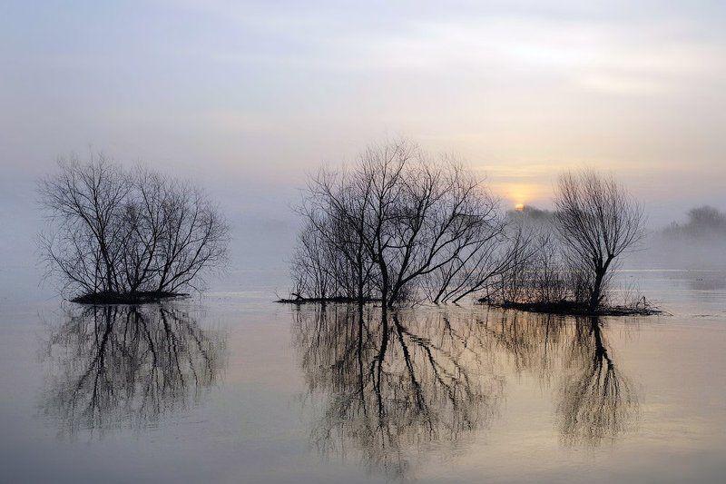 половодье, паводок, разлив, весна Большая водаphoto preview