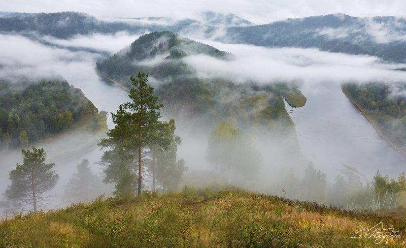 мана, туман, река Дождливое утроphoto preview