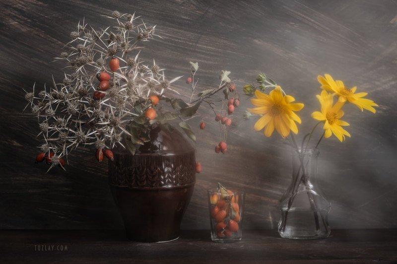 Про шипы, колючки и цветки топинамбура фото превью