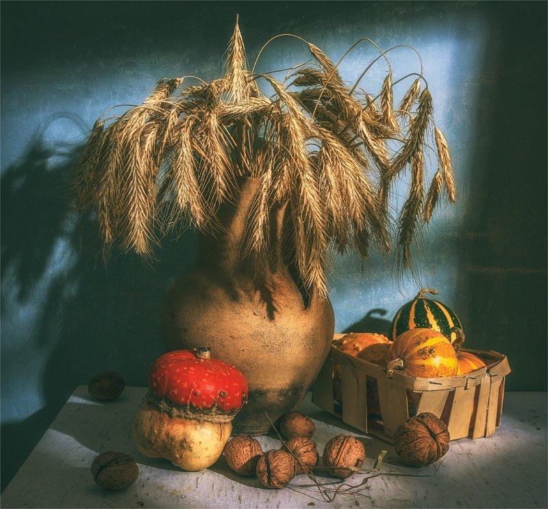 still life, натюрморт,    винтаж,   ретро, пшеница, колос, орехи, тыква, букет, свет и окна, свет, тень, в чуланчике фото превью