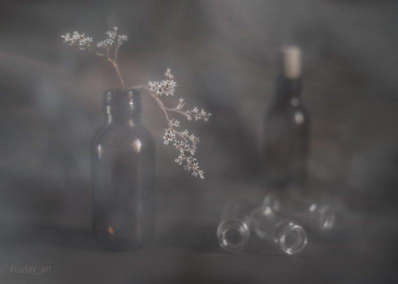 пузырьки, бутылочки, бессмертник, звёздочки, боке, bokeh, гелиос 81н, софт, дымка Фантазии о пузырьках фото превью