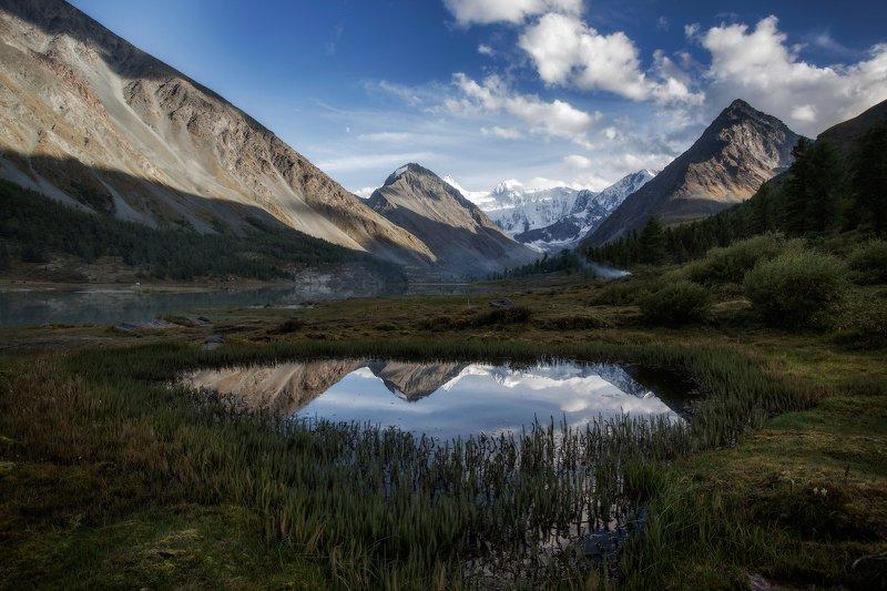 пейзаж, алтай, белуха,горы,отражение Пейзаж с видом на Белуху.photo preview