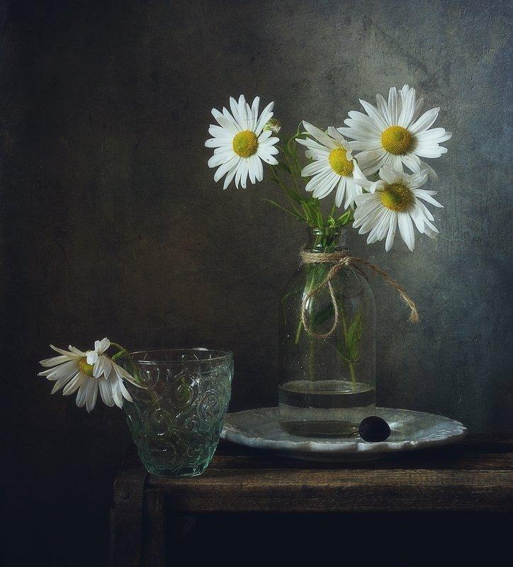натюрморт,still life,цветы,хризантемы ... фото превью