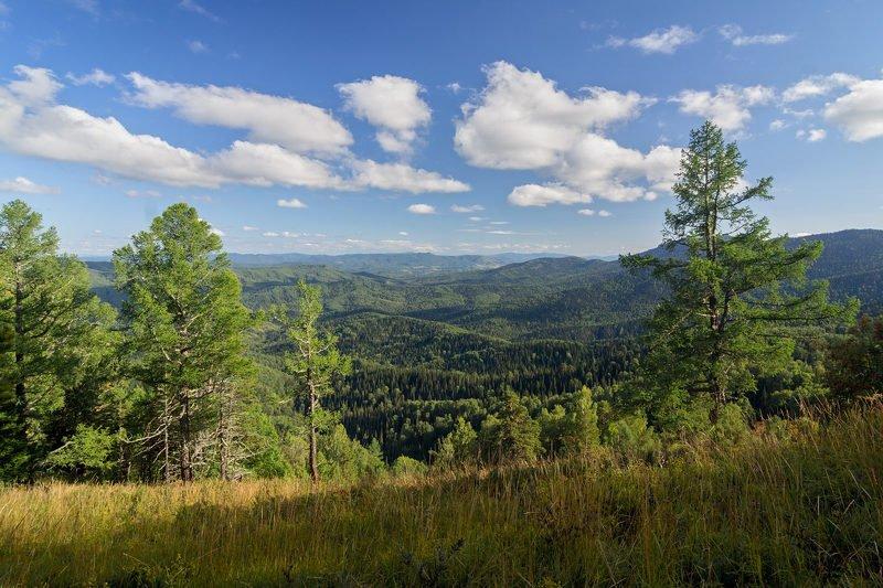 алтай, белокуриха, горы, воздух, алтайский край, гора крестик, белокуриха-2, чергинский хребет Прозрачный воздух Алтаяphoto preview