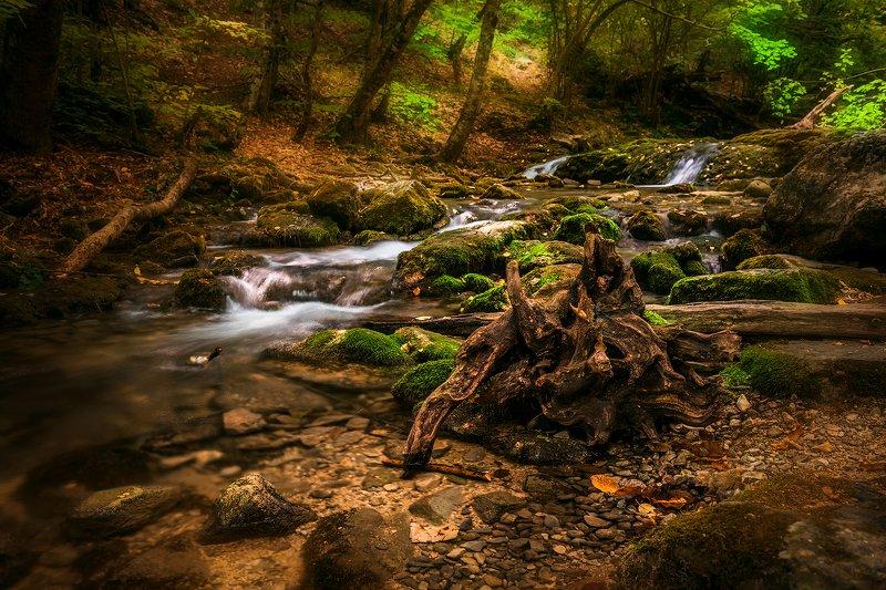 крым, водопад, лес, река, пейзаж, лето, вода, деревья, россия,  хапхал, ущелье, улу-узень Slow Riverphoto preview