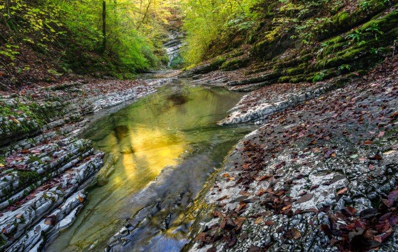 осенние, листья Осень на речке Каменистойphoto preview