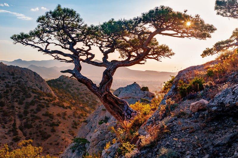 крым, черное море август 2019 Рассветphoto preview