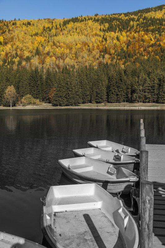autumn landscape beautiful photography frame canvas The autumnphoto preview