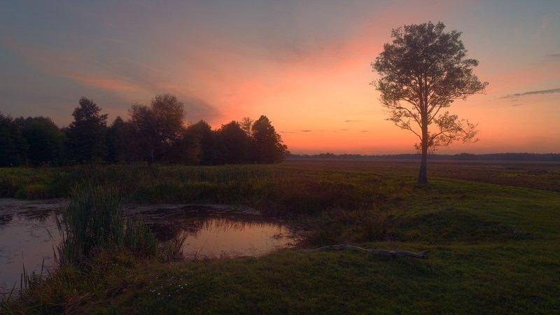зарево, закат, сентябрь, луг, берег photo preview