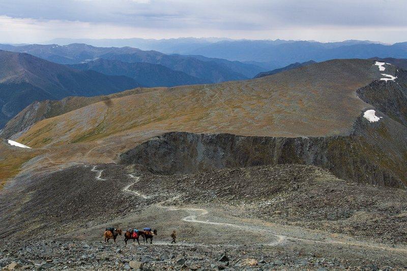 пейзаж, алтай, перевал,горы,лошади,тропа Перевал Каратюрек.photo preview