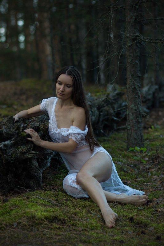 Лесные посиделкиphoto preview