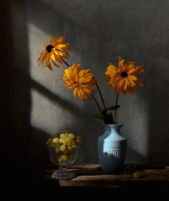 натюрморт,still life,цветы,рудбекия,виноград рудбекия... фото превью