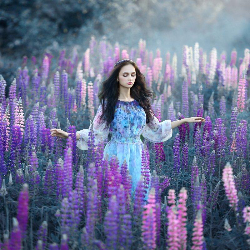 люпины, поле люпинов, девушка в люпинах, сиреневый, фиолетовый, арт фото, брюнетка, розовые люпины Люпины фото превью