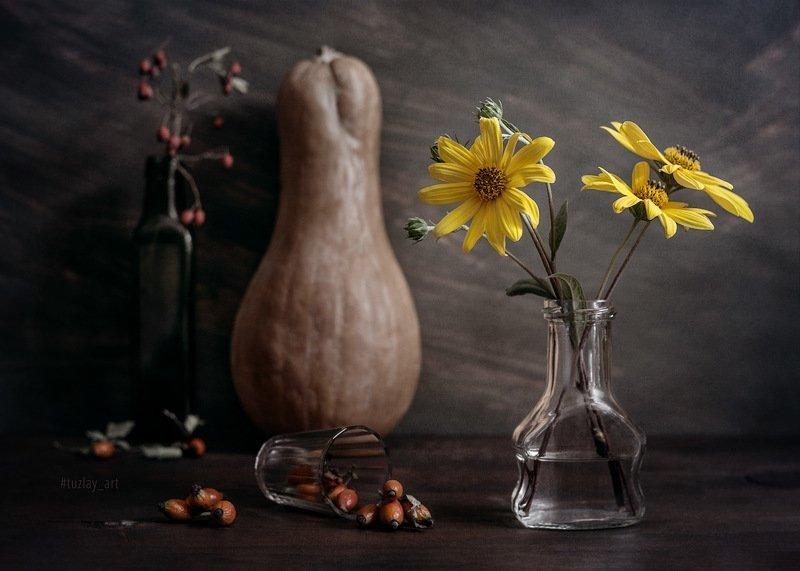 топинамбур, желтые цветы, тыква, шиповник Про топинамбур, тыкву и красные акценты фото превью