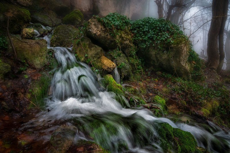 крым, водопад, лес, река, пейзаж, вода, деревья, россия, темиар, ущелье Истоки реки Темиар.photo preview