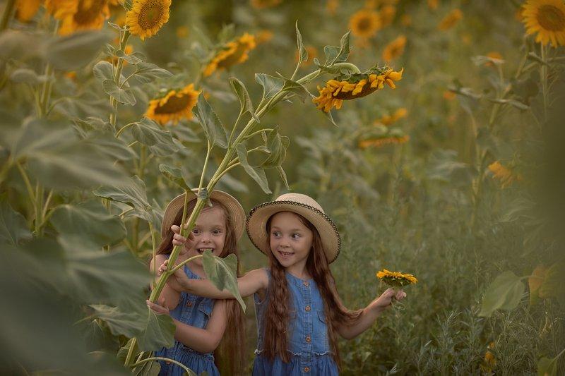детский портрет, дети, детская фотография, подсолнухи, в подсолнухах, девочка Два подсолнухаphoto preview