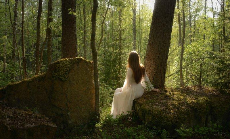 лес, линдуловская роща, рощино, ленинградская область, карельский перешеек, весна, девушка в платье, белое платье В сердце весныphoto preview