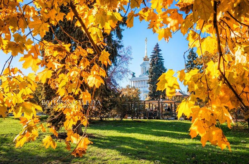 москва, вднх, осень Осенние листьяphoto preview