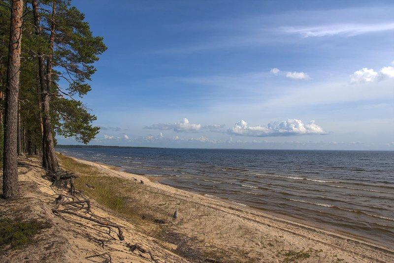 карелия Весь берег нашphoto preview