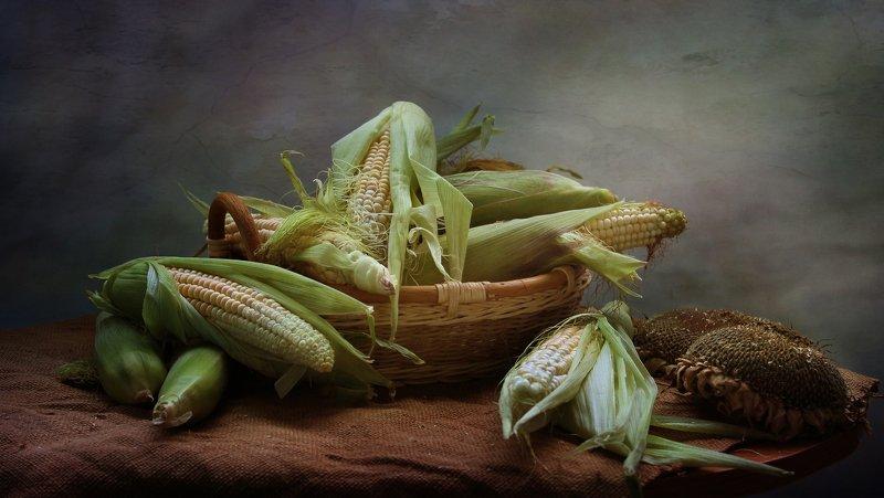 натюрморт, кукуруза, подсолнух, корзина С кукурузой фото превью