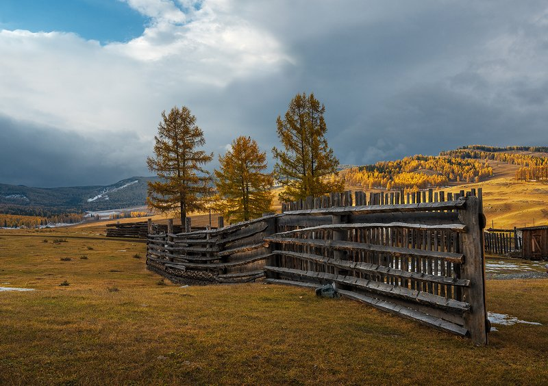 Алтай, Улаганское плато, осеньphoto preview