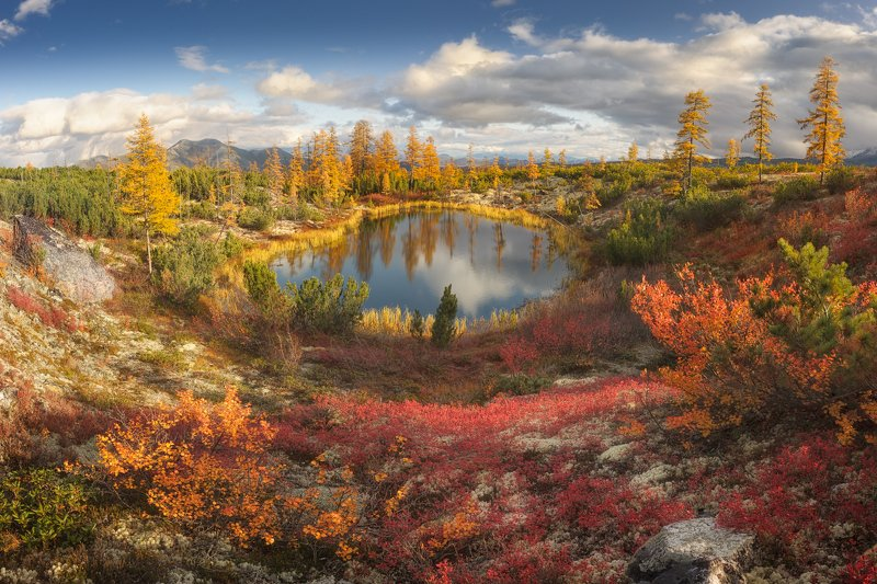 осень, озеро Колымская осенняя палитраphoto preview