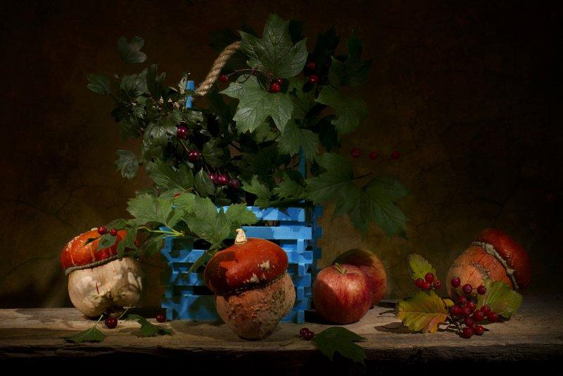 осень,тыквы,натюрморт Сентябрь фото превью