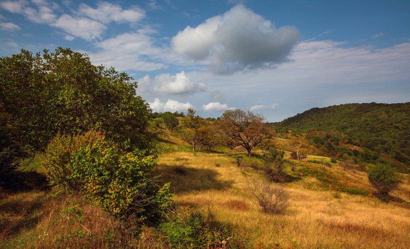 осень,пейзаж,горы,лес,природа,дагестан. Осень пришла..photo preview
