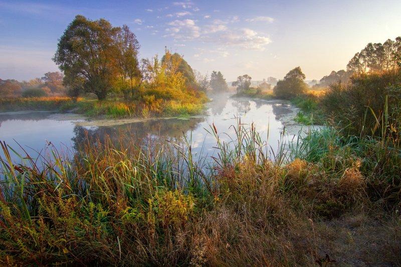 пейзаж, природа, туман, река, украина, волчья, landscape, nature, fog, river Утро на берегу рекиphoto preview