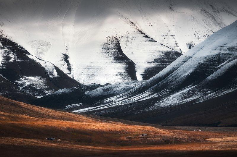 svalbard, spitsbergen, northnorway, islands, sandstones, arctic, summer Swirling Hillsphoto preview