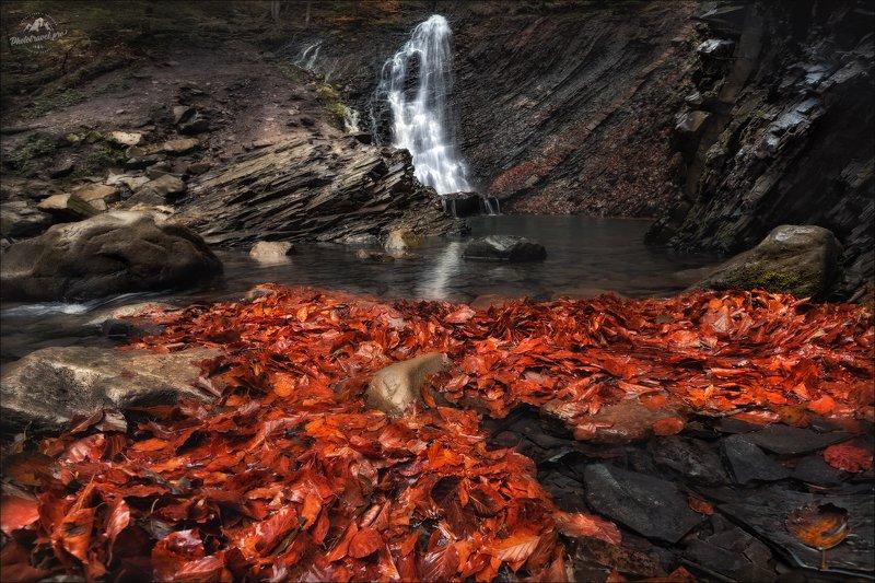 карпаты, водопад гук, осень, урочище женец, водопад женецкий гук, украина, Запах прелой листвы ...photo preview