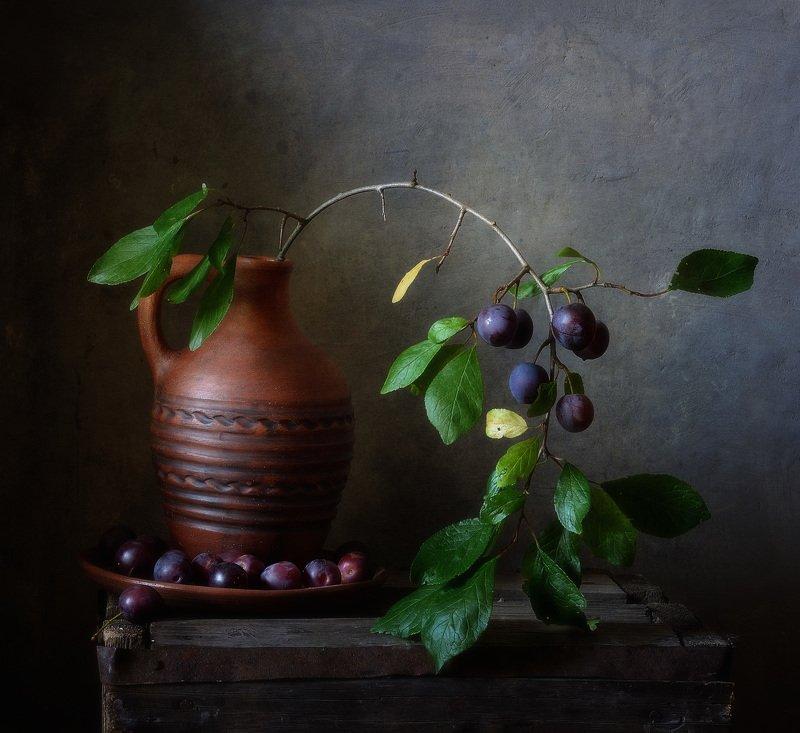 натюрморт,still life,терн,ягоды с терном... фото превью