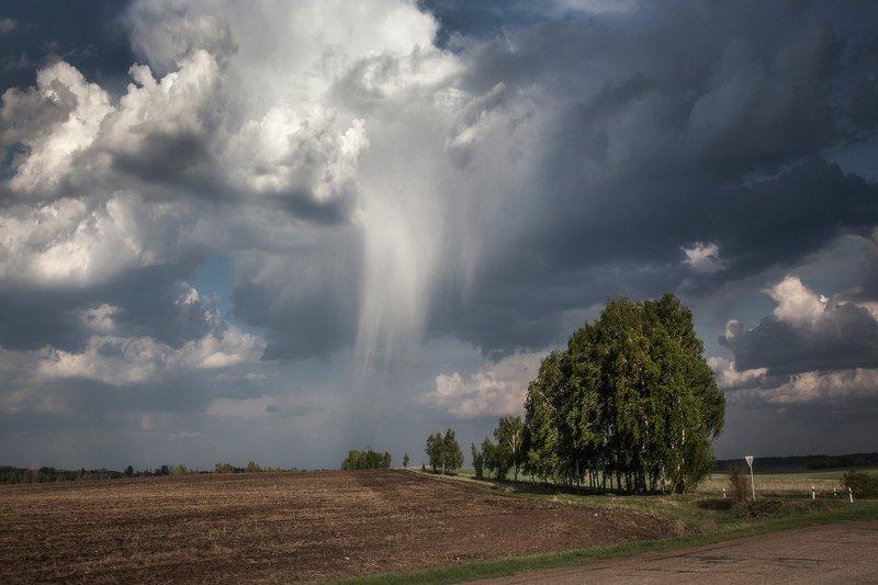 пейзаж,поле,тучи,дождь Ненастье.photo preview