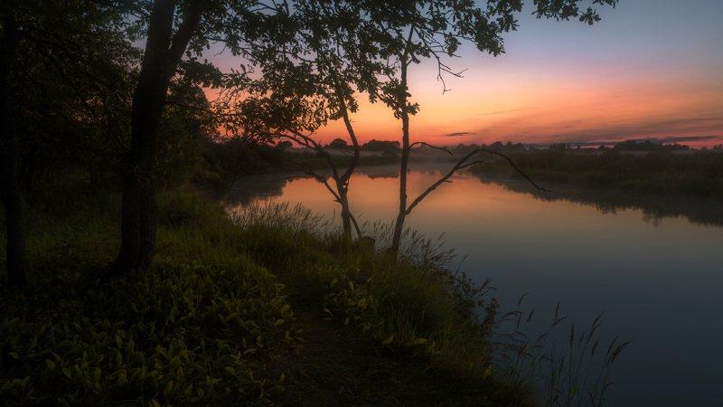 сумерки, закат, зарево, река, берег, дерево В сумерках июляphoto preview