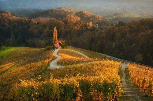 Осень в Словении...