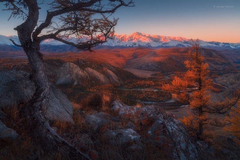 алтай,осень Осеннее утро в Курайской степи.photo preview