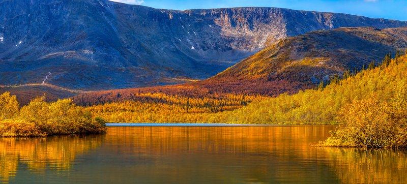 горы, озеро, осень, хибины, кольский, вудъявр, отражение, берег, водоём, в горах, путешествие, днём, листва, лес, хребет, берёзы, Осенние Хибиныphoto preview