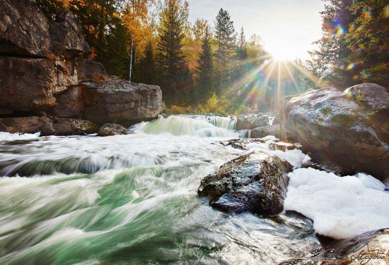 река, утро, солнце Утро на рекеphoto preview