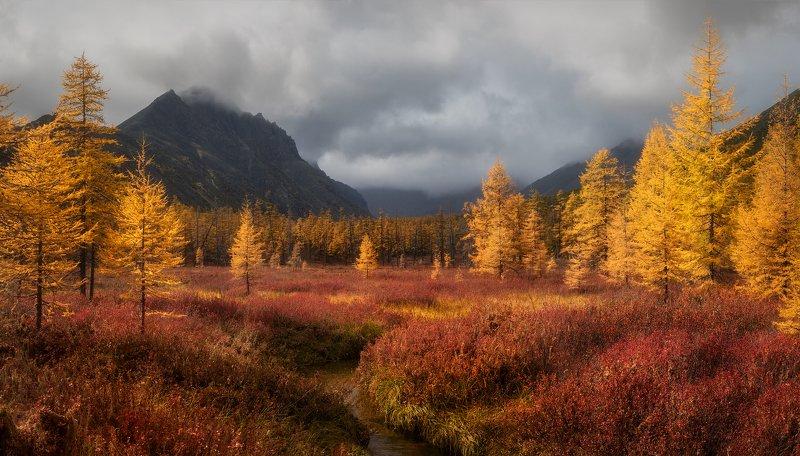 колыма, осень, озеро джека лондона Золотая осень на Колымеphoto preview