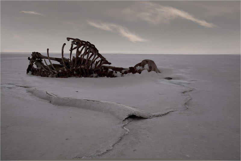 соленое озеро *photo preview