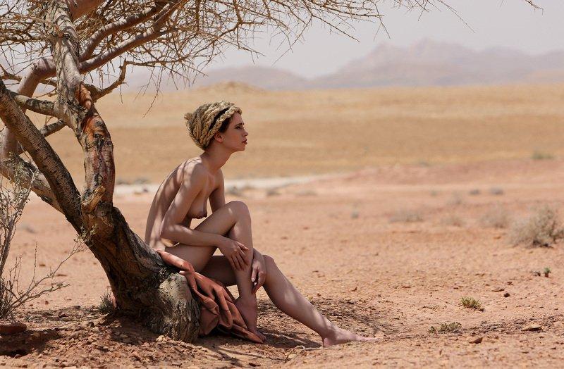 Пустыняphoto preview