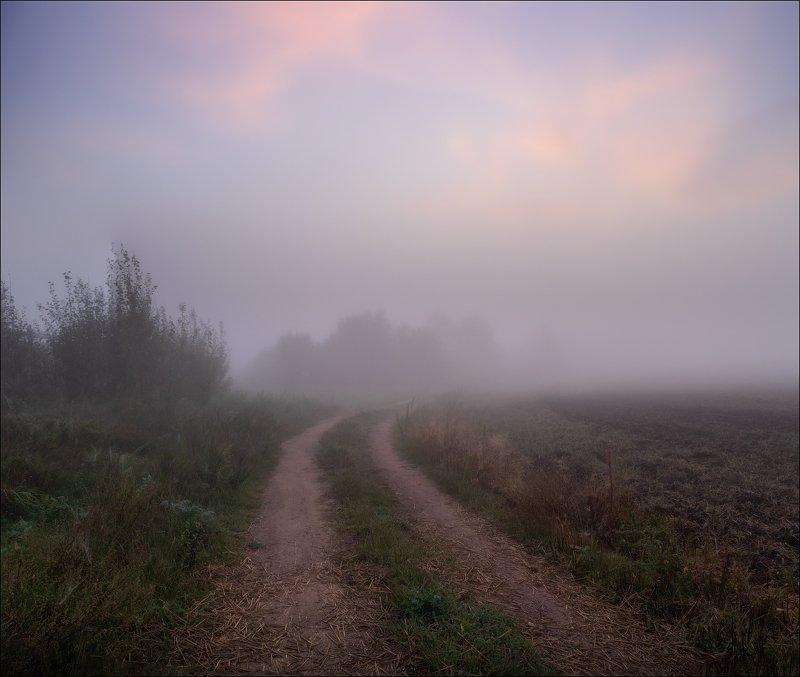 лето,рассвет, туман, Как то в туманеphoto preview