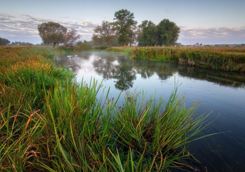 пейзаж, природа, река, волчья Утроphoto preview