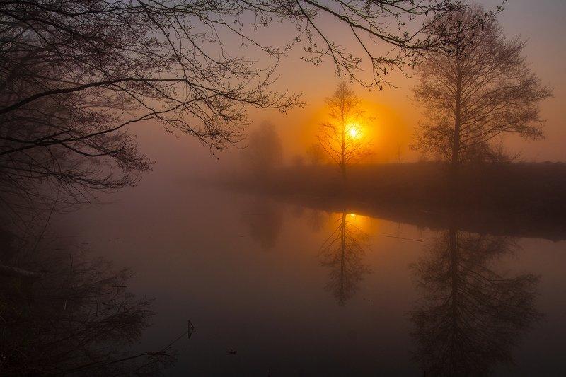 sunrise dawn landscape пейзаж рассвет природа Туманное озероphoto preview