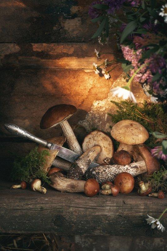 грибы, лето, натюрморт Летняя зарисовка с грибамиphoto preview