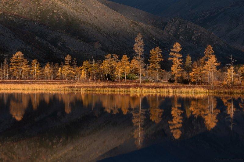 Осень на Колымеphoto preview