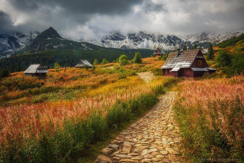 mountains, poland, polish, landscape, sunrise, sunset, colours, autumn, awesome, amazing, adventure, travel, beautiful, morning, tatry, shelter Autumn mood фото превью