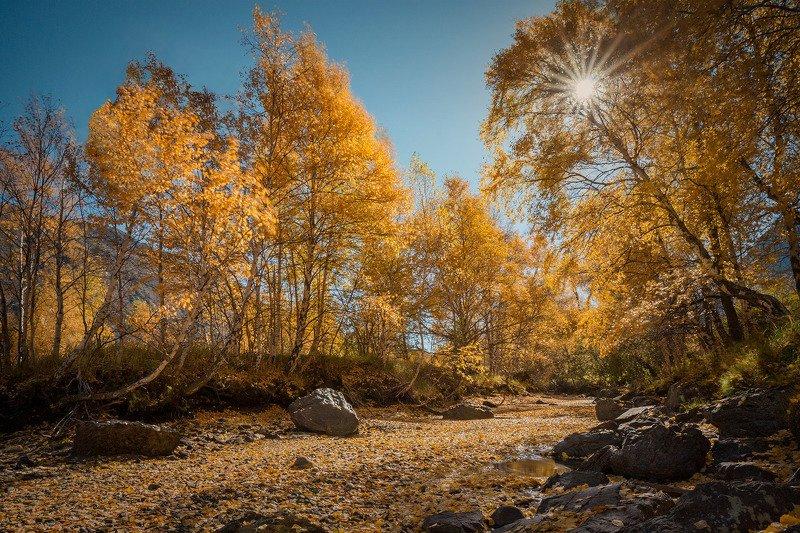алтай, осенний алтай, осень Алтайская осеньphoto preview