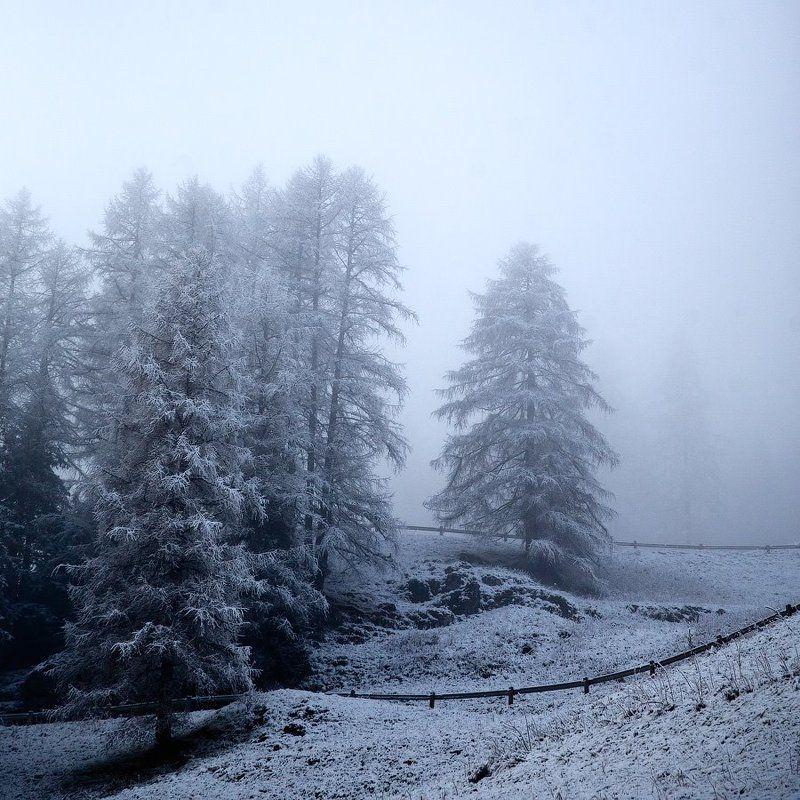 Туманный холмphoto preview
