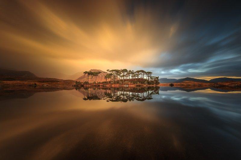 Pine Islandphoto preview